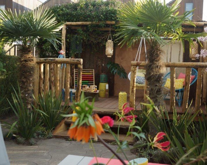 Trachycarpus fortunei palmbomen voor TV, Eigen huis en tuin 2