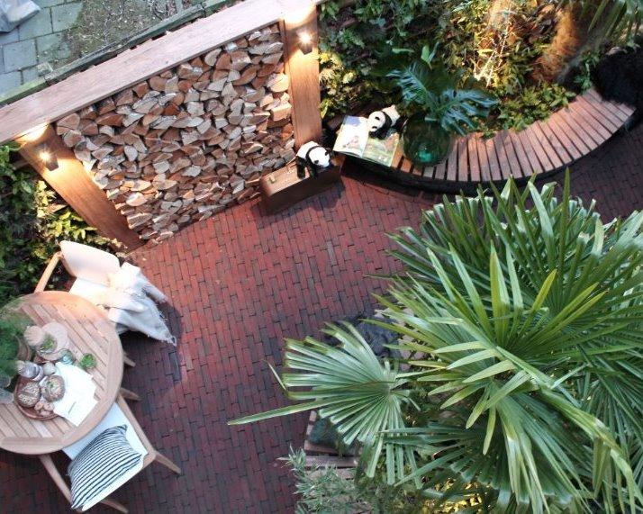 Trachycarpus fortunei palmbomen voor TV, Eigen huis en tuin